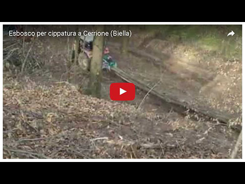 cerrione esbosco per cippato video